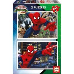 2X100 SPIDER MAN