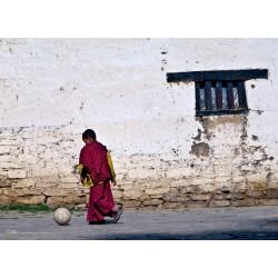 1000 NAT YOUNG BUDDHIST MONK