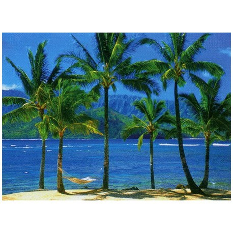 1500 THE HAWAIIAN PARADISE
