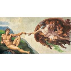 13200 LA CREACION DEL HOMBRE
